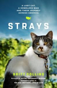 strays